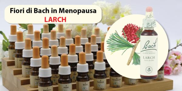 Larch fiori di Bach in Menopausa