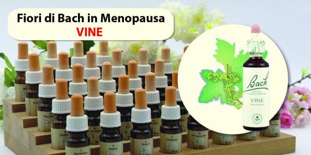 fiori di bach in menopausa vine