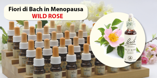 Wild Rose fiori di Bach in menopausa